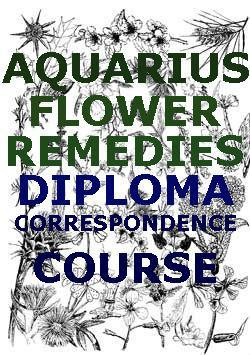 flower essence course