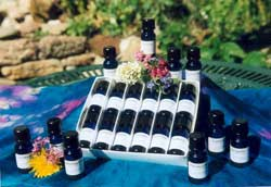 flower remedies distributors