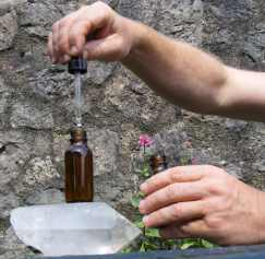 hand made flower essences